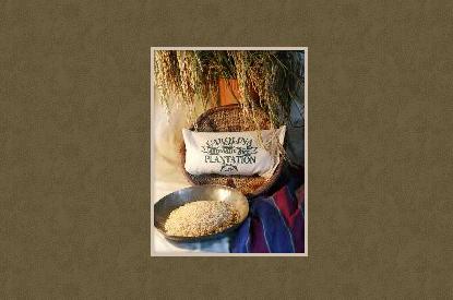 Carolina Plantation Brown Rice Carolina Plantation Rice